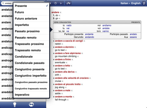 working with languages on the ipad igo with my ipad. Black Bedroom Furniture Sets. Home Design Ideas
